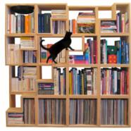 Kocia biblioteczka