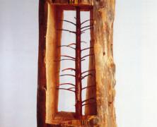 Młode drzewko