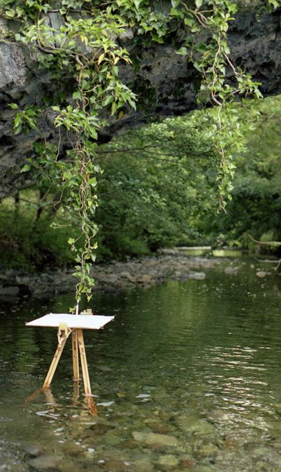 woda karmi rośliny natchnieniem życia