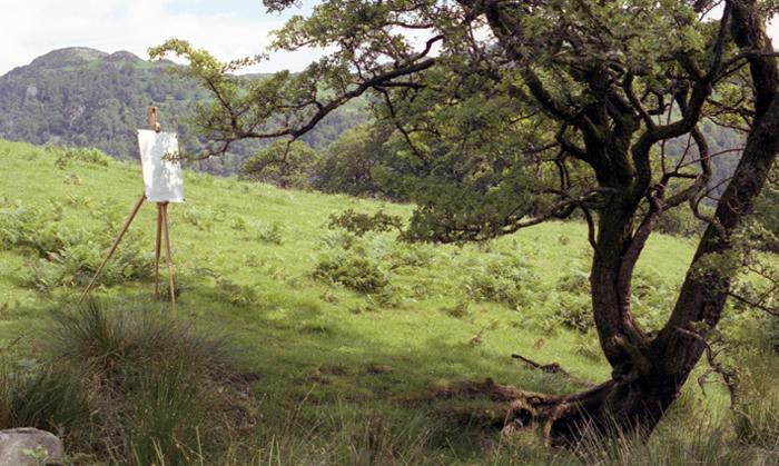 Powiewające na wietrze gałęzie smagają białe płótno