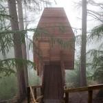 Leśna samotnia artystyczna