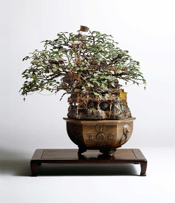 makieta-bonsai-04