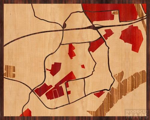 Tiel, Holandia. Heban Macassar Ebony, Klon, Padauk i Zebrano