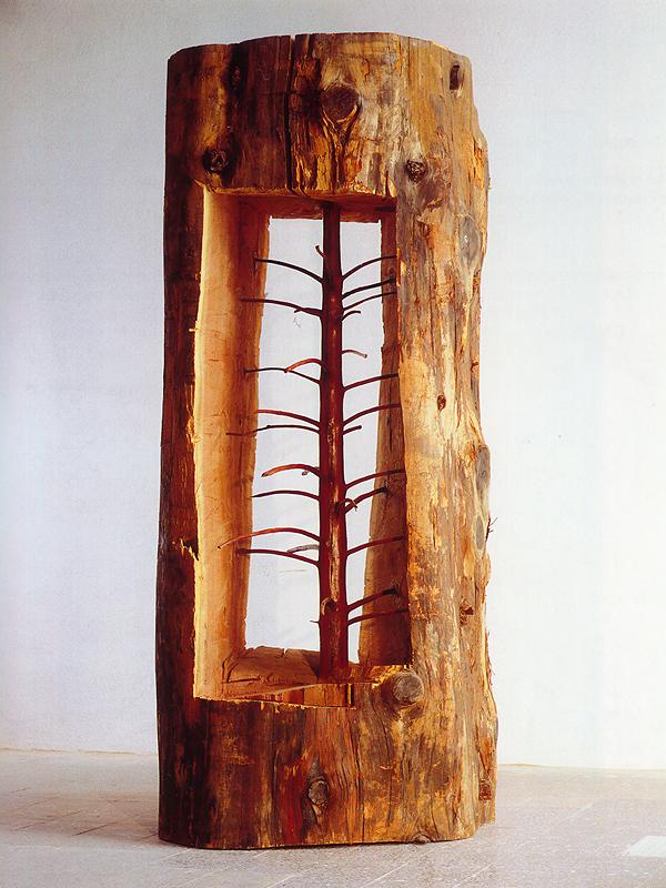 mlode-drzewo-01